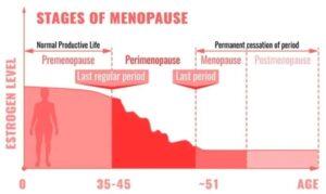 रजोनिवृत्ती चा काळ